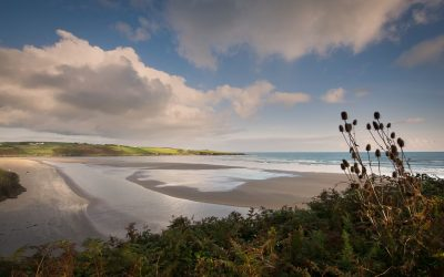 5 FOR 5: 5 Benefits of taking a Winter Swim and 5 places to take the plunge in West Cork.